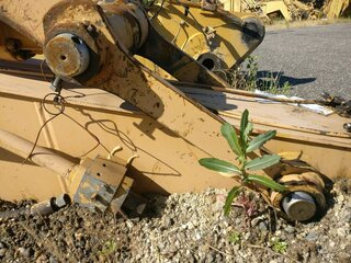 Link for CATERPILLAR 320C